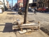 Tree Pit Bench in front of 323 St. Marks Avenue Brooklyn, New York